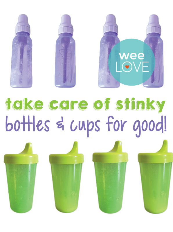 Squeaky clean bottles and sippy cups